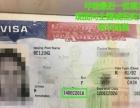 专业办理美国签证 普区敏感区均可操作 可大包落地