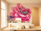 章丘爱美家室内墙绘 墙面彩绘 家装彩绘 工装彩绘
