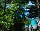南北湖,西塘街拍 旅拍 跟拍