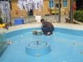 专业防水补漏,一次施工永保不漏,价格优惠,满意付款