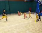 北京篮球培训班 青少年篮球培训 少儿篮球培训