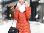 2013秋冬新品冬装修身韩版羽绒服女正品中长款加厚外套 潮大毛领