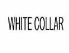 白领时装 诚邀加盟