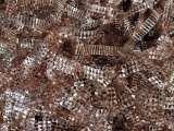 东莞清溪镍 钛 铬 铑 钼 钴粉回收价格高