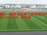 湘西吉首市足球场人造草施工湖南一线体育设施工程有限公司