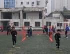 合肥少儿足球训练(2016秋季学期班)