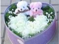 漳州鲜花速递圣诞平安夜礼盒礼物玫瑰花巧克力平安果