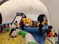 乌鲁木齐大型充气动物模型熊猫岛优惠租赁汉光展览卡通道具出租