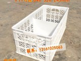 北京格诺P11号鸡蛋塑料周转筐分隔水果筐640乘320