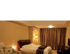 豪华酒店式公寓出租(日租月租均可)