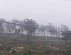 枣庄龙泉公墓
