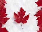 加拿大拨款4.4亿