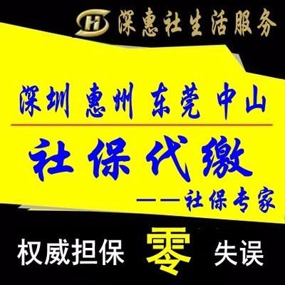 大亚湾惠阳免费公司注册,工商执照,记帐报税