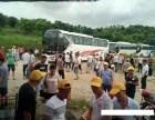广州增城荔枝龙眼园采摘荔枝龙眼园+农庄午餐一二天游