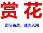 春游去哪好?北京到狼牙山踏青+挑戰玻璃棧道+賞油菜花二日游