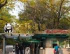 北京动物园+海洋馆一日