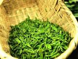 黔南布依族苗族自治州地区哪里有卖优质都匀毛尖-贵州绿茶