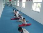 跆拳道馆找个舞蹈、瑜伽合作