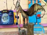 仿真恐龙模型出租大型恐龙展览租赁公司展览会议