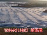 hdpe土工膜产品规格及用途,养殖水池防渗膜单价