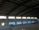 红旗2000平方钢结构厂房出租