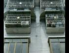剑南镇 安国村自建房 写字楼 90平米