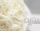 秦皇岛婚庆策划婚礼策划主题婚礼打造找王老师
