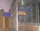 貂笼猫笼松鼠笼龙猫笼