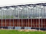 玻璃溫室設計 玻璃溫室大棚造價