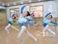 嘉兴市舞美专业舞蹈培训,您的不二选择