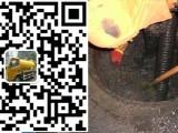 广州大沙头通下水管道 大沙头通厕所 越秀抽化粪池