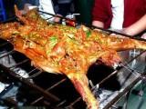 武侯区农家乐点杀柴火鸡48元一斤,烤全羊45一斤 活羊