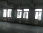 康桥工业园5楼厂房1300平出租