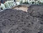 长春黑土,有机肥鹿粪鸡粪猪粪,果树,葡萄树,架条