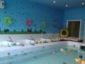 儿童游泳馆寻求合作共营