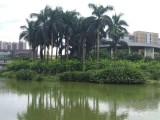 2020广州天河区养老院岭南养生谷的标准和地址