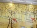 柳州墙绘专业团队 柳州恒美墙绘保利大江郡墙绘案例