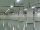 桥头镇专业施工环氧地坪漆质量保证