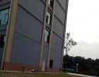 龙泉成龙大道旁4800平米办公楼、教学楼出租出售