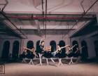 武汉哪里有形体芭蕾培训,单色舞蹈零基础免费验课程