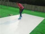 盛通橡塑(已认证),鄂尔多斯溜冰板,耐磨仿真冰溜冰板