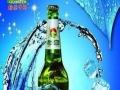绿溪啤酒 绿溪啤酒加盟招商