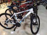 临淄捷安特自行车