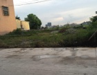 锡场镇东仓村出租 土地 665平米 (一亩)