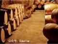 红酒市场乱象对进口红酒经销商有啥启示