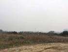 惠城区江北2万5万8万25万平方地皮出租(可分租)