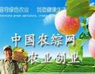【中国农综网】加盟/加盟费用/项目详情