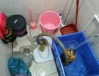 茂名化洲中垌疏通厕所,疏通下水道,清理化粪池