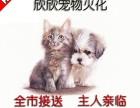 上海宠物火化宠物殡葬服务 24小时上门服务