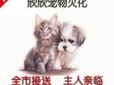 浦东南码头宠物火化地址电话宠物殡葬服务24小时上门服务